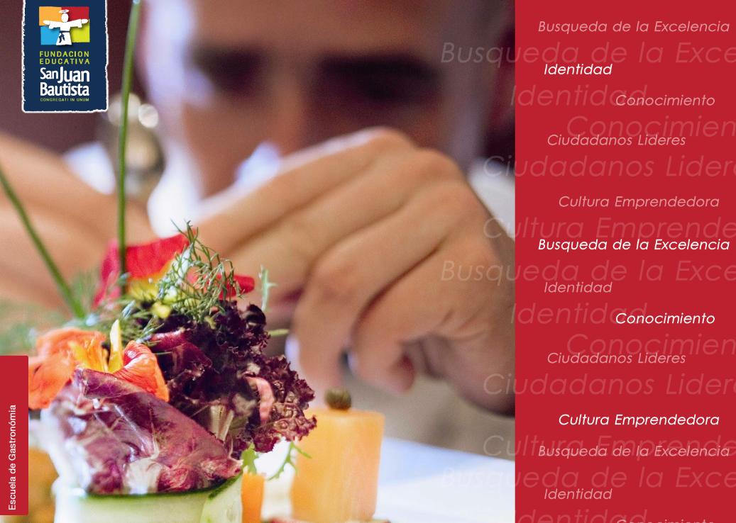 Cultura Gastronmica - reas de la Cocina, Equipos e Inocuidad